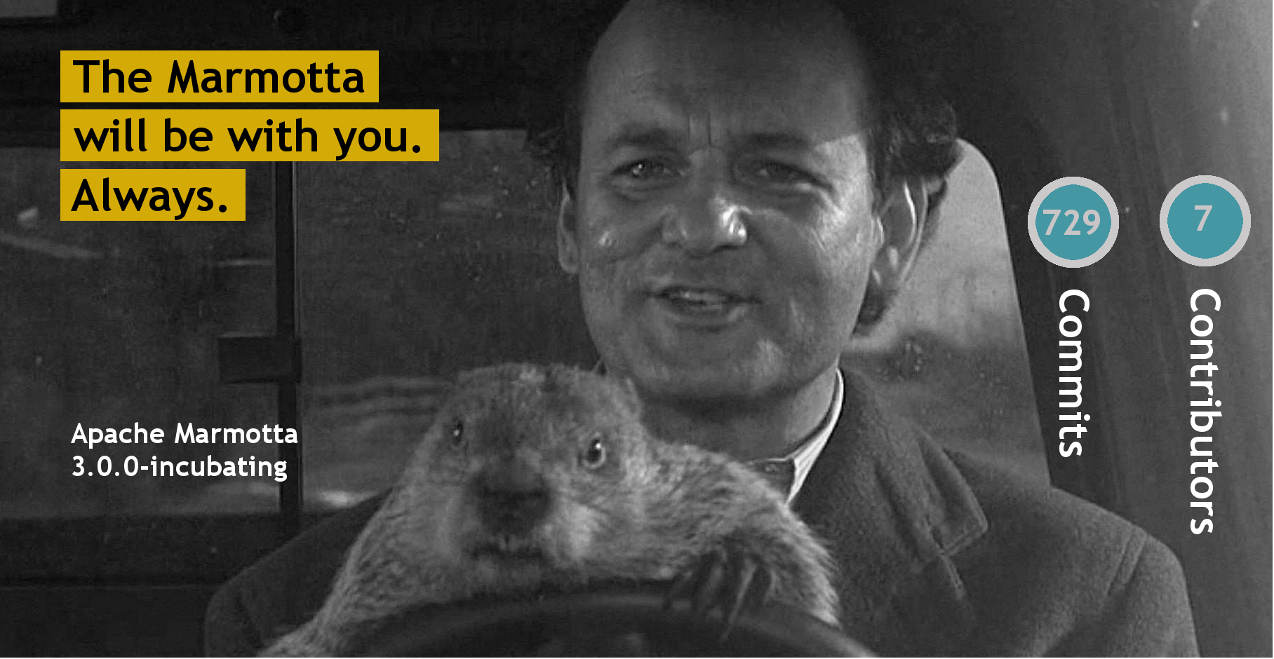 the Marmotta will be with you... always
